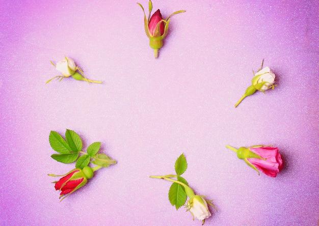 Boccioli di rosa su uno sfondo di legno viola in stile retrò shabby chic vista dall'alto un luogo delicato per le congratulazioni