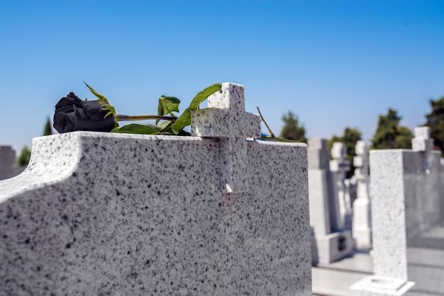 Rose in un cimitero con lapide