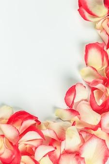 Cornice di petali di rosa. messa a fuoco selettiva morbida..