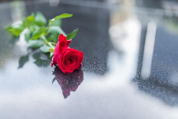 Rose sulla lapide.