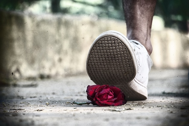 Piede della mammella rosa - immagini del fallimento dell'amore