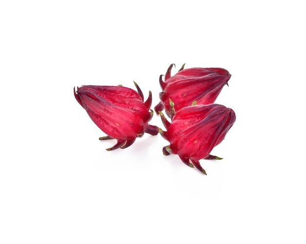 Roselle hibiscus sabdariffa fiore di frutta rossa.