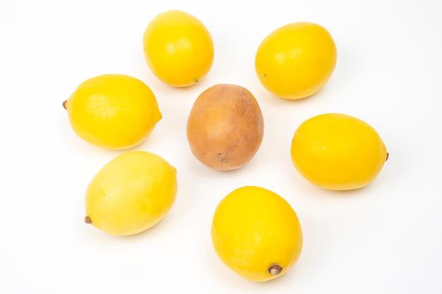 Limone marcio accanto a limoni freschi su uno sfondo bianco