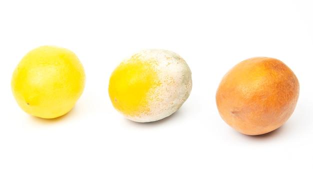 Limone marcio accanto a limoni freschi su sfondo bianco