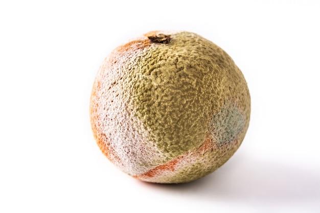 Frutta arancione marcia isolata su fondo bianco
