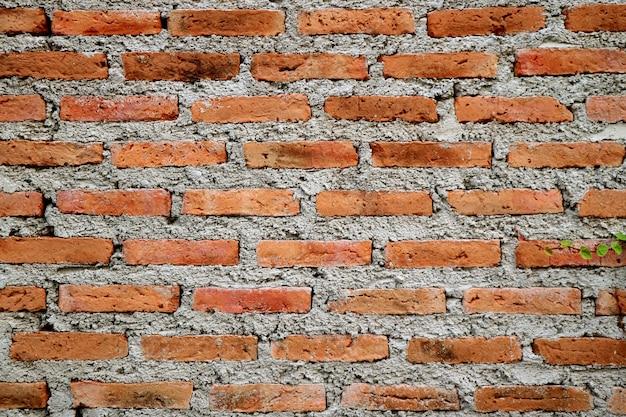 Muro di mattoni ruvido del cemento di una costruzione di invecchiamento, fondo di struttura