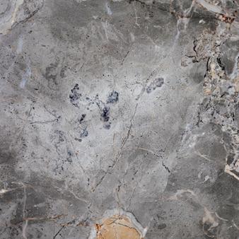 Texture ruvida in marmo grigio con striature modello di annunci social