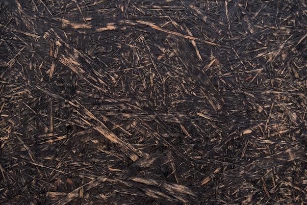 Trama in legno grezzo. sfondo astratto trama osb. materiale truciolare