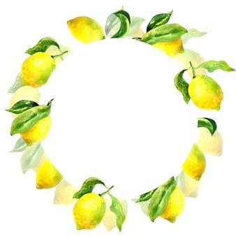 Cornice botanica rotonda con limoni e foglie. illustrazione disegnata a mano dell'acquerello.