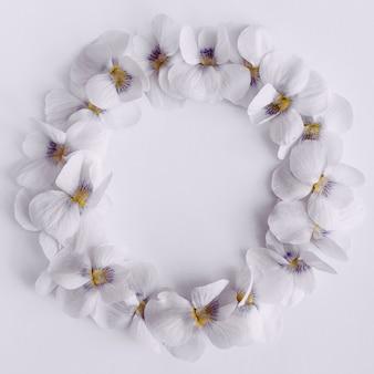 Cornice rotonda di delicate violette su sfondo bianco