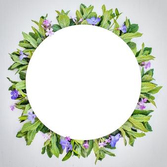 Cornice rotonda con menta mentha fresca, fiori rosa e viola. vista piana, vista dall'alto, copia spazio.