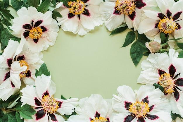 Bordo di ghirlanda cornice rotonda di fiori di peonie bianche