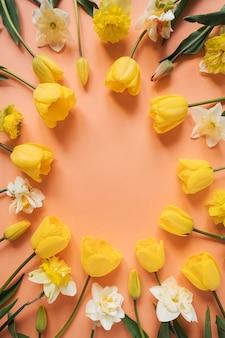 Ghirlanda cornice rotonda fatta di narciso giallo e fiori di tulipano su rosa pesca