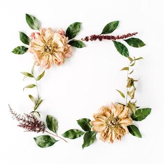 Modello di ghirlanda cornice rotonda con peonie essiccate beige fiori, rami e foglie isolati su bianco