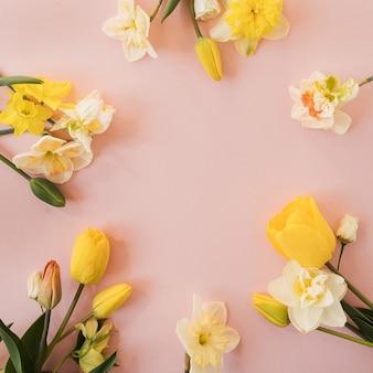 Ghirlanda di cornice rotonda con spazio vuoto della copia fatto di narciso giallo e fiori di tulipano sul rosa. vista piana laico e dall'alto