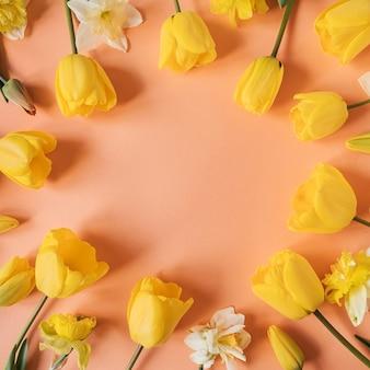 Ghirlanda di cornice rotonda con spazio vuoto della copia fatto di narciso giallo e fiori di tulipano sul rosa
