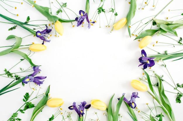 Corona di cornice rotonda con tulipani gialli, iris viola e fiori di camomilla su sfondo bianco. disposizione piana, vista dall'alto. sfondo floreale