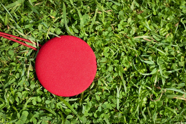 Altoparlante di musica rotonda, sdraiato sull'erba.