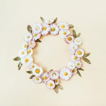Corona rotonda cornice copia spazio mock up. daisy camomilla boccioli di fiori