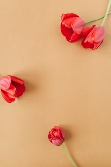 Corona rotonda cornice copia spazio mock up. fiori di tulipano