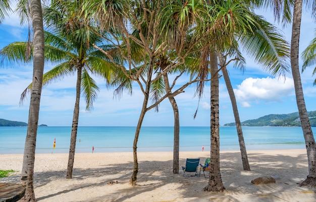 Fila di palme da cocco sulla spiaggia paesaggio esotico spiaggia tropicale per sfondo o carta da parati.