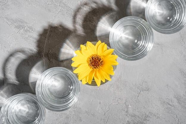 Riga della bevanda fresca dell'acqua chiara con il fiore giallo in vetro sulla vista superiore della composizione creativa leggera dura del fondo concreto