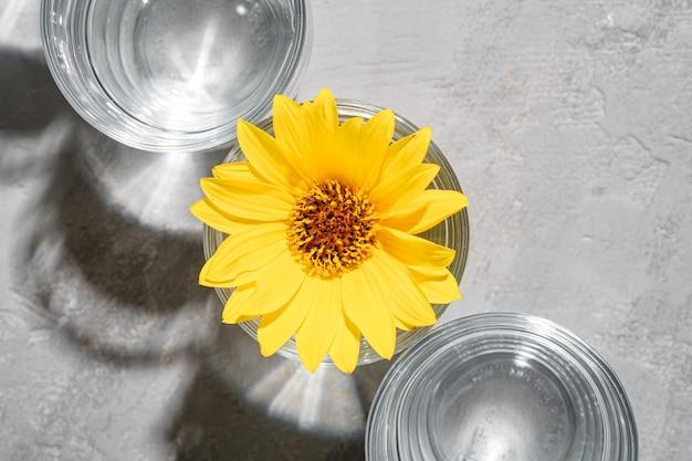 Fila di bevanda fresca di acqua limpida con fiore giallo in vetro su una superficie di calcestruzzo, composizione creativa luce dura, vista dall'alto