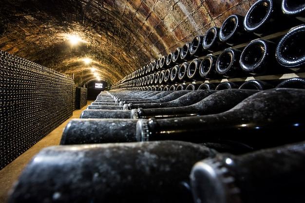 File di bottiglie di vino in cantina