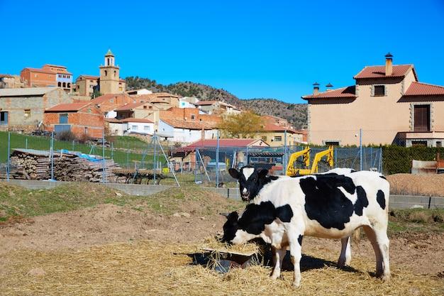 Villaggio di royuela sierra de albarracin teruel spagna