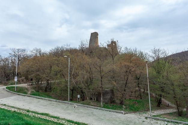Le rovine delle antiche mura della fortezza georgiana ujarma. storia