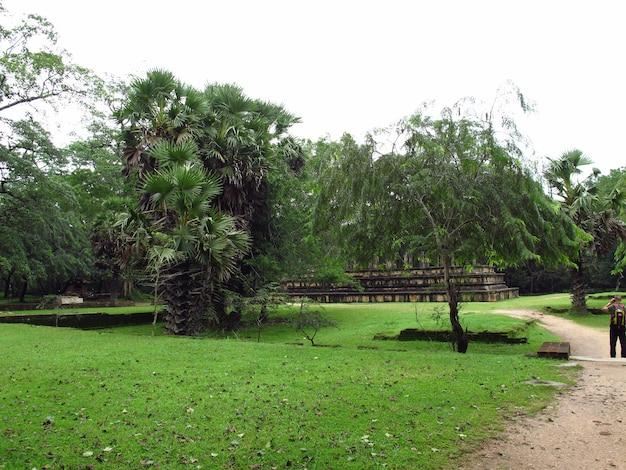 Rovine della camera del consiglio del re nel parco di polonnaruwa, sri lanka
