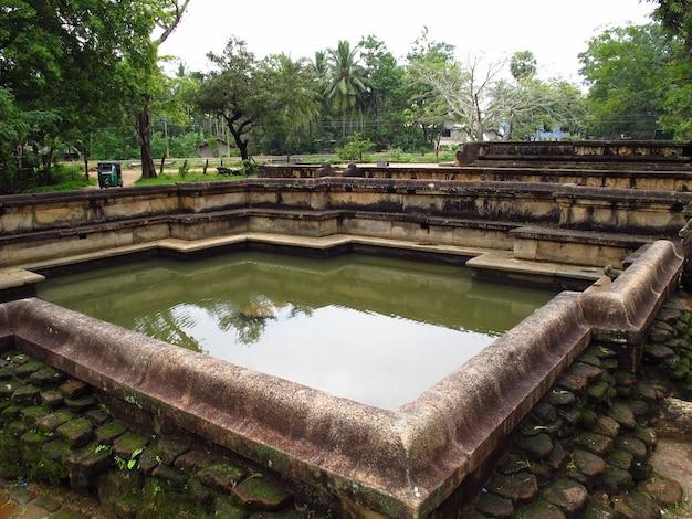 Rovine della piscina nel parco polonnaruwa, sri lanka