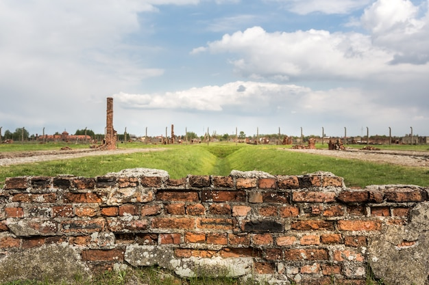 Rovine sul territorio del campo di concentramento tedesco di auschwitz ii, polonia. Foto Premium