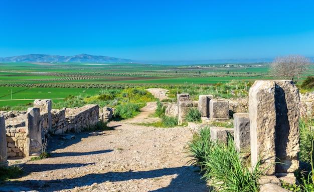 Rovine di volubilis, una città berbera e romana in marocco. sito del patrimonio mondiale