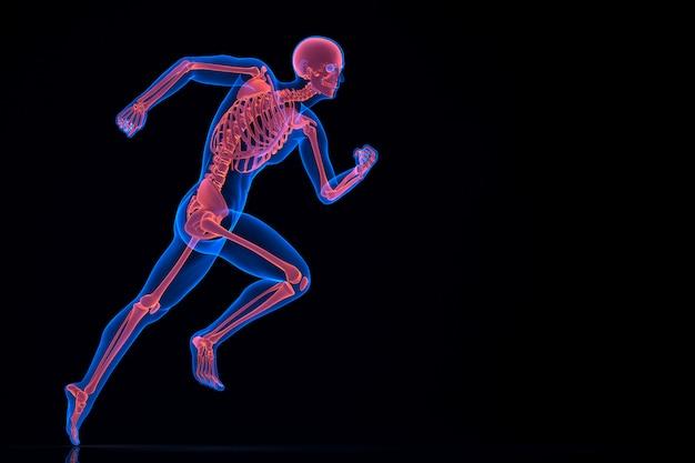 Esecuzione di scheletro 3d. contiene il tracciato di ritaglio