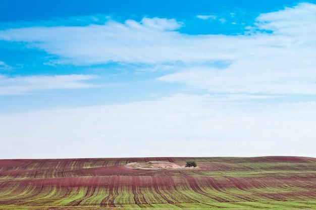 Paesaggio rurale. scatti d'inverno
