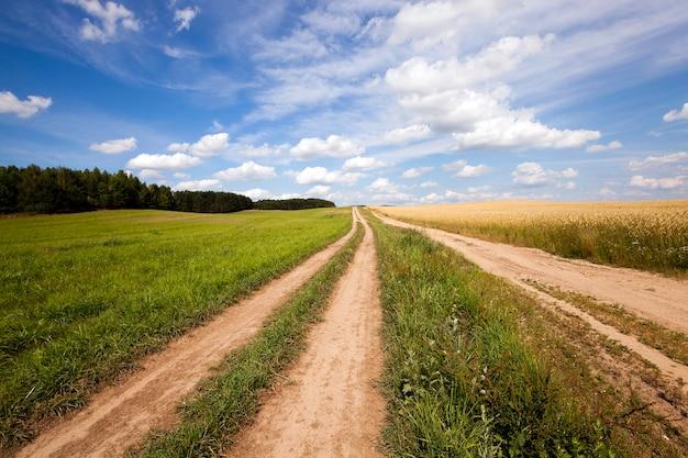 La strada rurale - la piccola strada non asfaltata nelle zone rurali