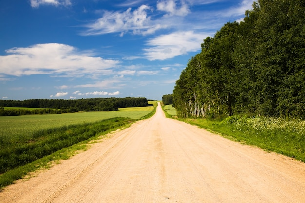 Strada rurale durante l'anno estivo
