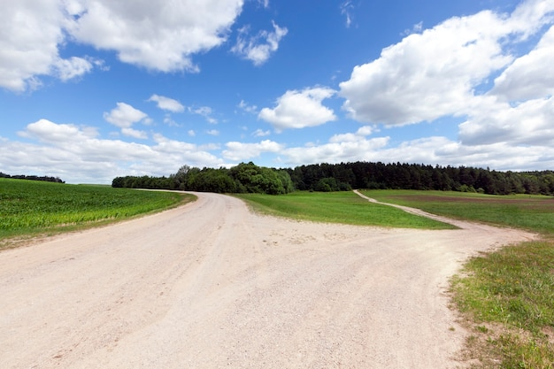 Strada rurale senza asfalto, divisa in due strade separate in direzioni diverse