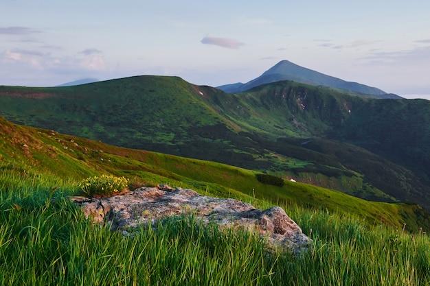 Scena rurale. maestose montagne dei carpazi. bel paesaggio. vista mozzafiato.