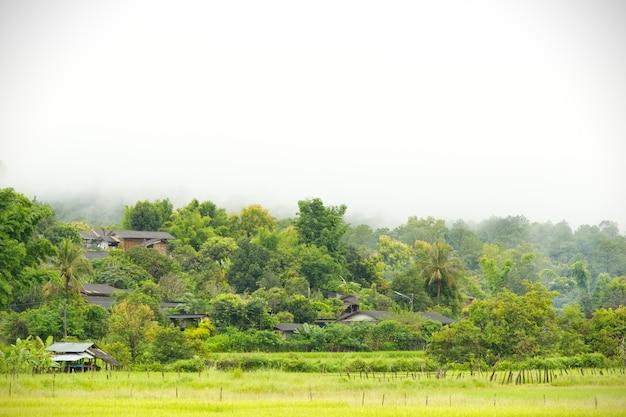 Villaggi rurali della thailandia nella zona asiatica e risaie tra le montagne