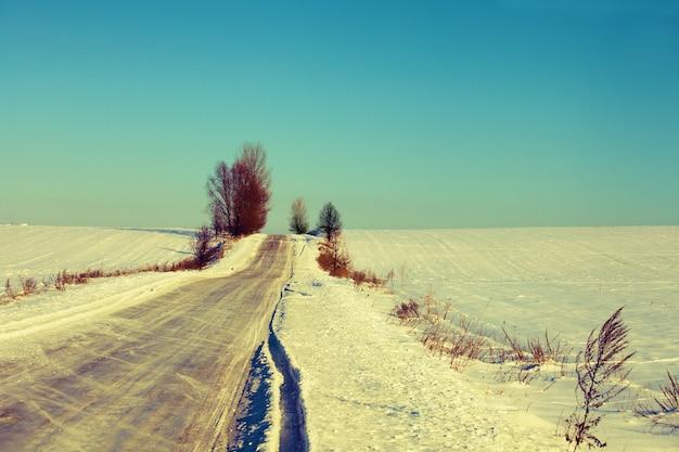 Paesaggio invernale rurale