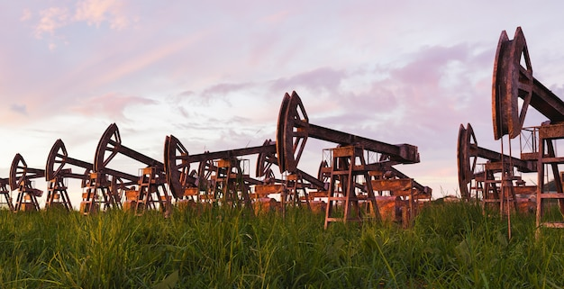 Pompe dell'olio arrugginite e abbandonate e l'erba che cresceva intorno