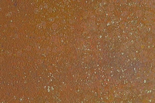 Lamiera arrugginita con funghi, sfondo