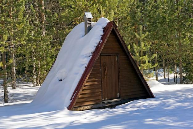 Entrata rustica della ghiacciaia (frigorifero) in una foresta di pini in una soleggiata giornata invernale