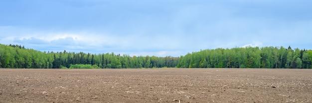 Paesaggio piatto estivo rustico. terreno arato in un campo, un bosco misto di conifere e latifoglie e un cielo azzurro con nuvole. striscione
