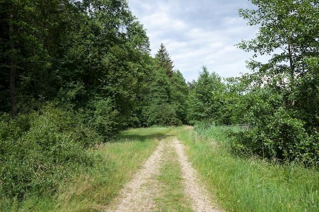 Solchi di una strada per il traffico nelle zone rurali