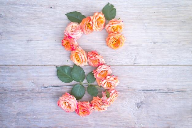 S, alfabeto del fiore delle rose isolato su fondo di legno grigio, disposizione piana