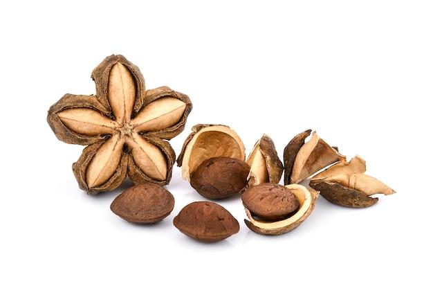 Semi di arachidi sacha inchi su sfondo bianco