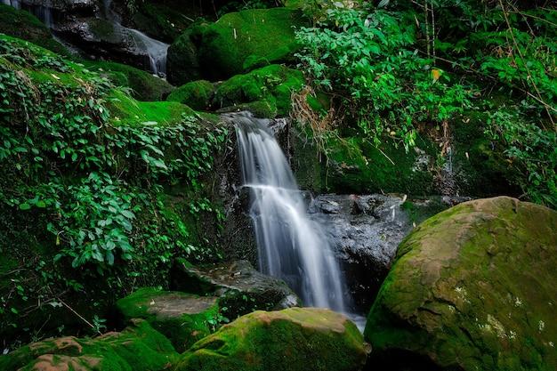 Le cascate di saithip sono alcune delle attrazioni del parco. bella cascata nella foresta profonda del parco nazionale di phu soi dao, province di uttaradit, nel nord della thailandia